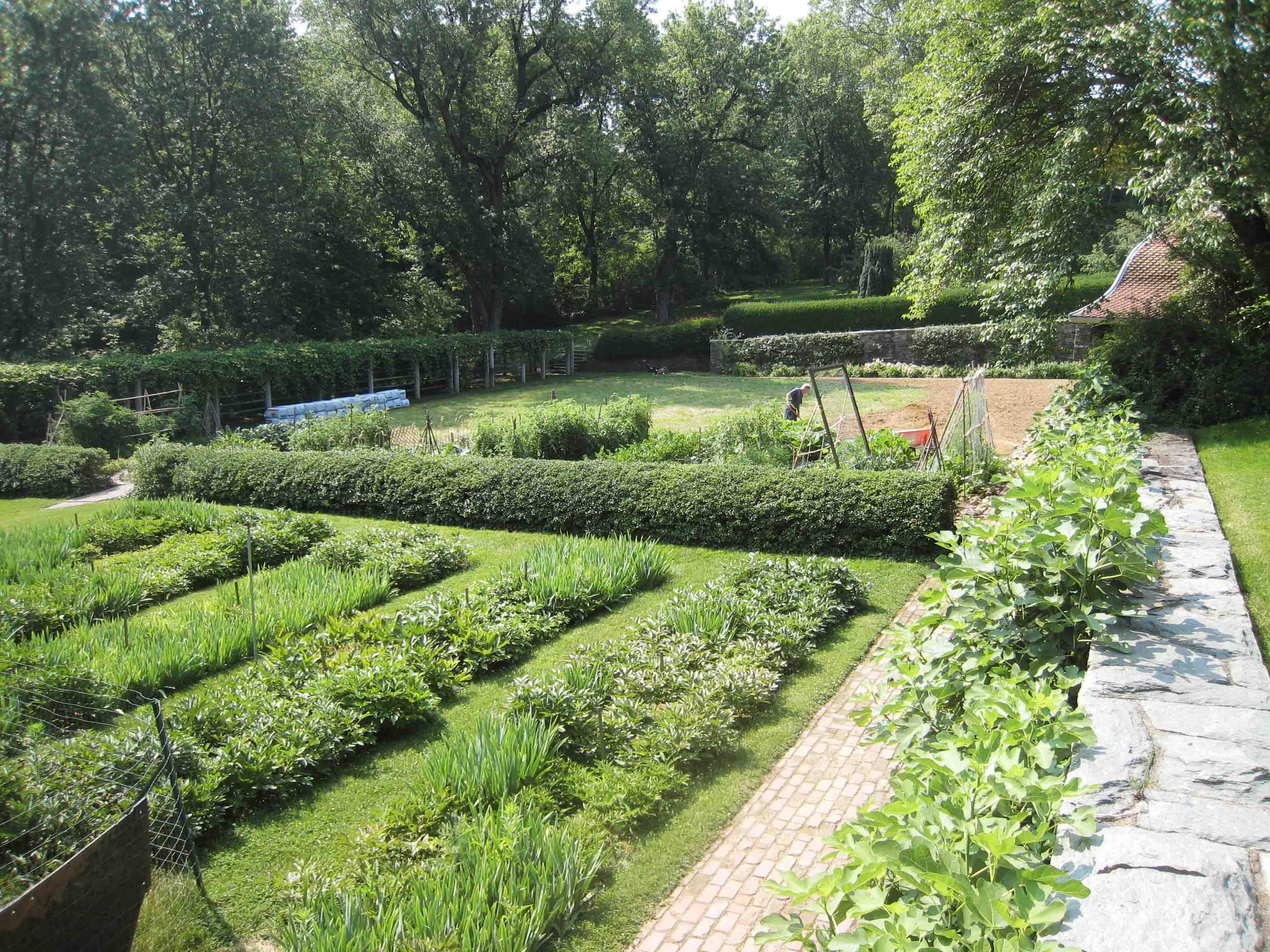 D O Garden Stories The Kitchen Garden At Dumbarton Oaks The Kitchen Garden Today